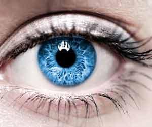 Human Eye in Retina
